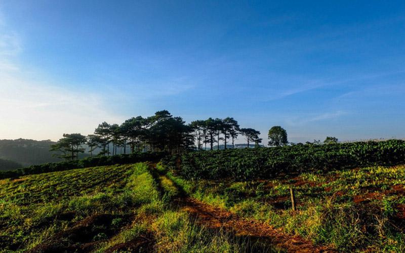 Dòng chảy đầu tư BĐS đổ về Bảo Lộc, đất nền tăng giá bền vững