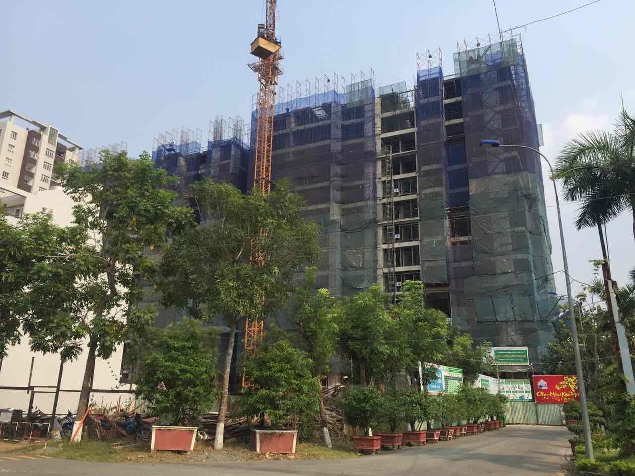 tiến độ xây dựng căn hộ calla garden